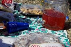 Piknik Teeme ära