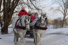 Vastlasõit hobustega